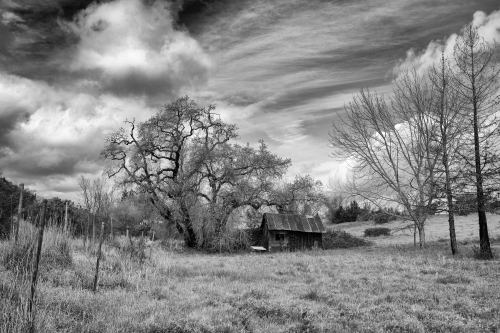 Old Barn Hwy 12_DSC00656_NikBW